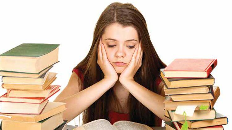 Ücretli Essay Talebi, Önerdiğimiz Ekipler